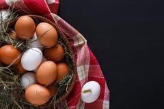 Ovos marrons isolados, fundo da galinha fresca do cultivo orgânico Foto de Stock