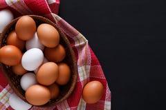 Ovos marrons isolados, fundo da galinha fresca do cultivo orgânico Imagens de Stock