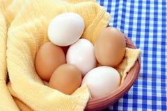 Ovos misturados na argila Bown Fotos de Stock