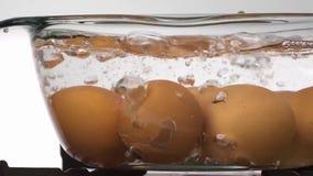 Ovos na água a ferver fotos de stock