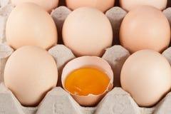Ovos na bandeja como um fundo foto de stock