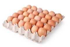 Ovos na bandeja de papel Fotografia de Stock