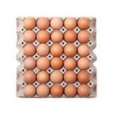 Ovos na bandeja de papel Fotos de Stock