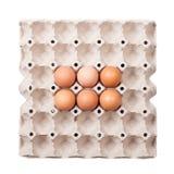 Ovos na bandeja de papel Foto de Stock