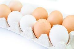 Ovos na bandeja de papel Imagens de Stock