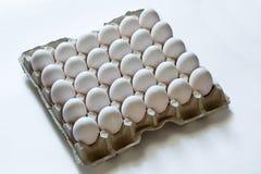 Ovos na bandeja de papel Fotos de Stock Royalty Free