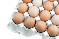 Ovos na bandeja de papel isolada no branco Fotografia de Stock Royalty Free