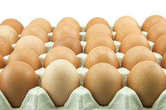Ovos na bandeja de papel isolada no fundo branco Imagens de Stock