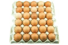 Ovos na bandeja de papel isolada no fundo branco Fotos de Stock