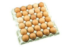 Ovos na bandeja de papel isolada no fundo branco Imagem de Stock Royalty Free
