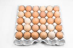 Ovos na bandeja de papel no fundo branco Fotos de Stock