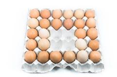 Ovos na bandeja de papel no fundo branco Fotografia de Stock Royalty Free