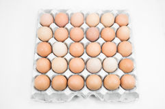 Ovos na bandeja de papel no fundo branco Fotos de Stock Royalty Free