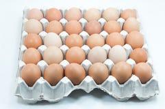 Ovos na bandeja de papel, ovos de Brown em uma caixa do ovo Imagens de Stock