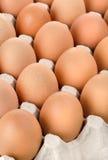 Ovos na bandeja do cartão Imagem de Stock