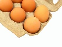 Ovos na caixa Imagens de Stock Royalty Free