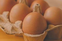 Ovos na caixa de cartão Fotos de Stock