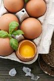 Ovos na caixa de ovo Fotografia de Stock