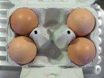 Ovos na caixa de ovo Foto de Stock