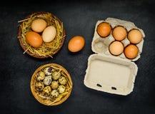 Ovos na caixa e no ninho Imagens de Stock Royalty Free