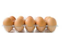 Ovos na caixa plástica Imagem de Stock