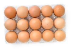 Ovos na caixa plástica Imagem de Stock Royalty Free