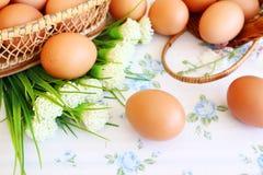 Ovos na cesta imagem de stock