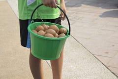 Ovos na cubeta plástica imagens de stock royalty free
