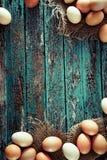 Ovos na madeira imagem de stock
