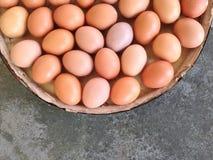 Ovos na placa de madeira no cimento Imagem de Stock