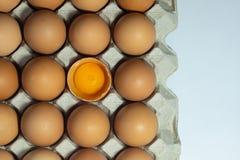 Ovos no empacotamento da caixa da caixa fotos de stock