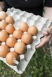 Ovos no empacotamento de papel Fotos de Stock Royalty Free