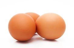 Ovos no fundo branco fotos de stock