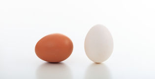 Ovos no fundo branco Foto de Stock