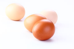 Ovos no fundo branco Imagem de Stock Royalty Free
