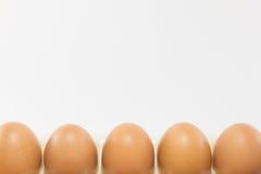 Ovos no fundo branco Imagens de Stock