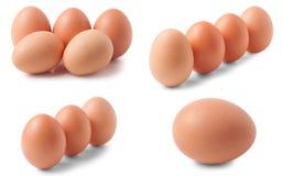 Ovos no fundo branco Grupo ou coleção Imagens de Stock Royalty Free