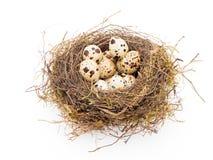 Ovos no ninho Fotos de Stock Royalty Free