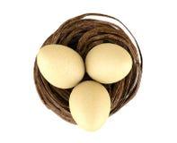 Ovos no ninho Imagem de Stock Royalty Free