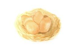 Ovos no ninho ilustração royalty free