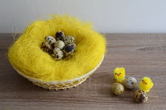 Ovos no ninho e na galinha dois pequena Fotografia de Stock