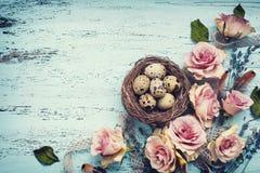 Ovos no ninho e nas flores secadas Foto de Stock Royalty Free