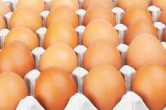 Ovos no recipiente do cartão Imagens de Stock Royalty Free