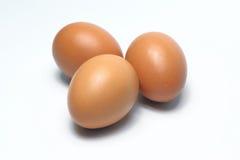 Ovos orgânicos Alimento biológico em Tailândia Fundo branco fotografia de stock royalty free