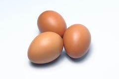 Ovos orgânicos Alimento biológico em Tailândia Fundo branco Fotos de Stock Royalty Free