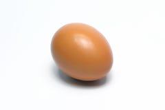 Ovos orgânicos Alimento biológico em Tailândia Fundo branco foto de stock royalty free