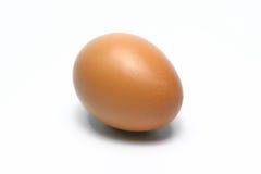 Ovos orgânicos Alimento biológico em Tailândia Fundo branco imagens de stock royalty free