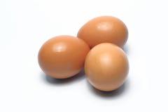 Ovos orgânicos Alimento biológico em Tailândia Fundo branco imagens de stock