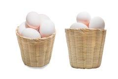 Ovos orgânicos do pato Imagem de Stock