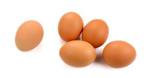 Ovos orgânicos no fundo branco Foto de Stock Royalty Free